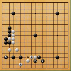 プロ棋士指導碁-大垣P指導碁五子局-001